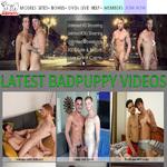 Bad Puppy Best