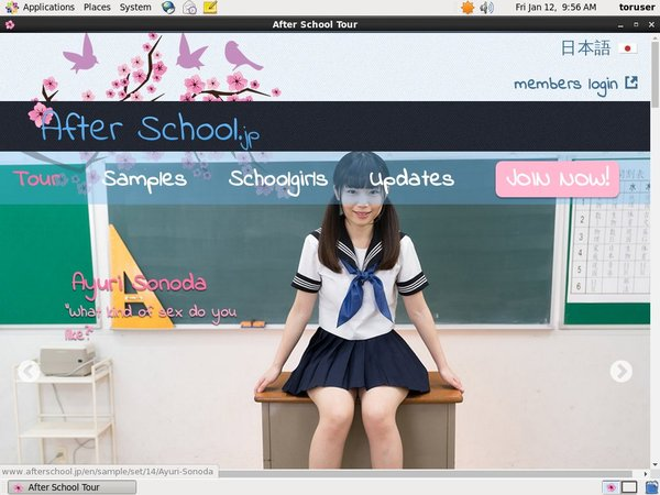 Afterschool.jp On Sale